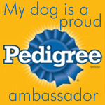 ambassador pedigree