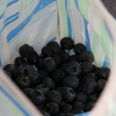 How to Freeze Blueberries (No clumps!)