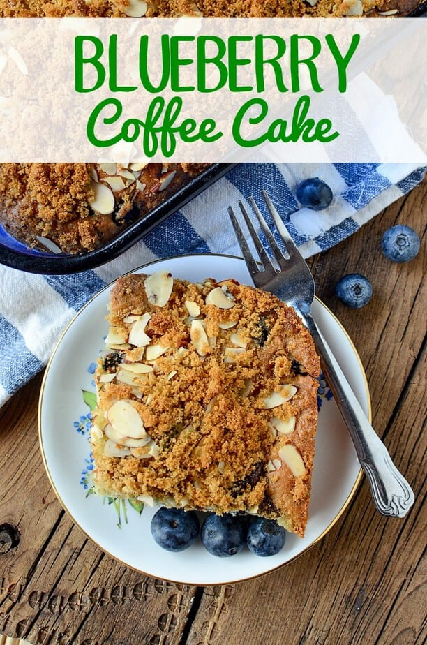 Blueberry Coffee Cake Recipe- This Mama Loves