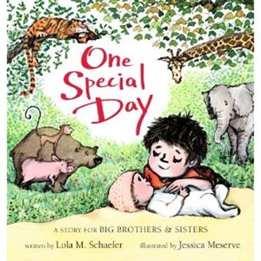 One Special Day A Story for Brothers & Sisters