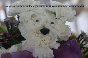 flowers, mothers day, dog lovers