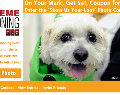 "ASPCA partners with TLC's ""Extreme Couponing"" to help local animal shelters"