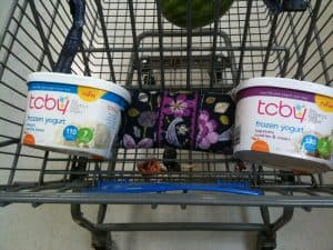 tcby cookies and cream frozen yogurt