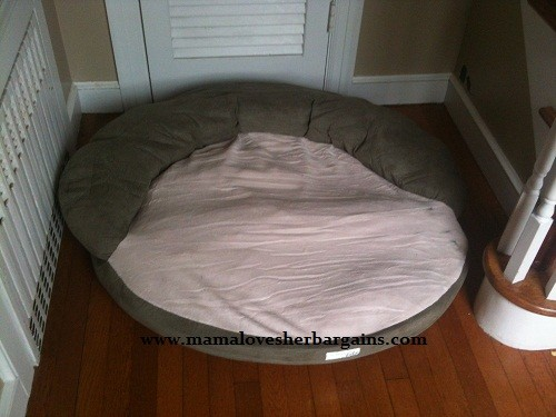 Pet Bed with Memory Foam from Nature's Sleep