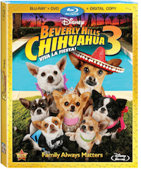 Celebrating with Family in honor of Beverly Hills Chihuahua 3: Viva La Fiesta! #PapiSpeaks