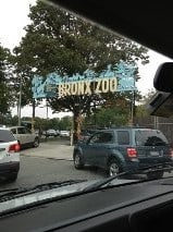 Bronx Zoo – A great family adventure!