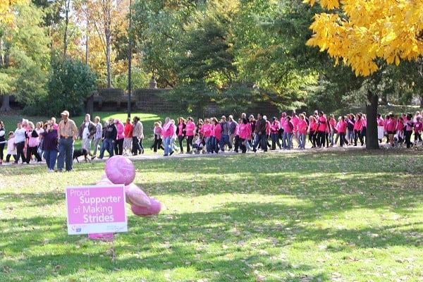 making strides walkers