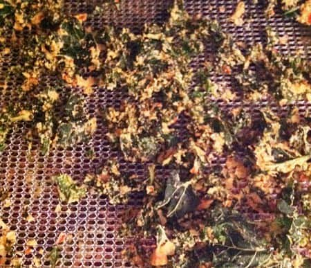 kale chips excalibur dehydrator giveaway