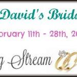 davids bridal gift card