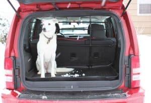 Husky Liner Cargo Mat