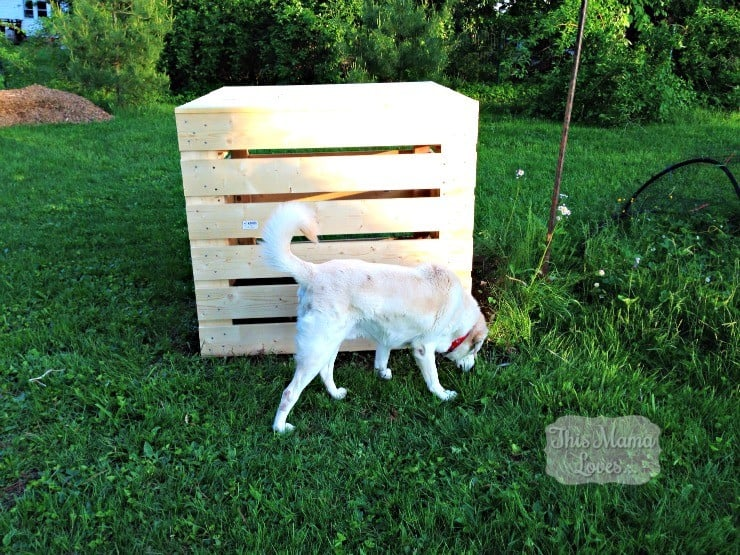 home depot diy compost bin tobey