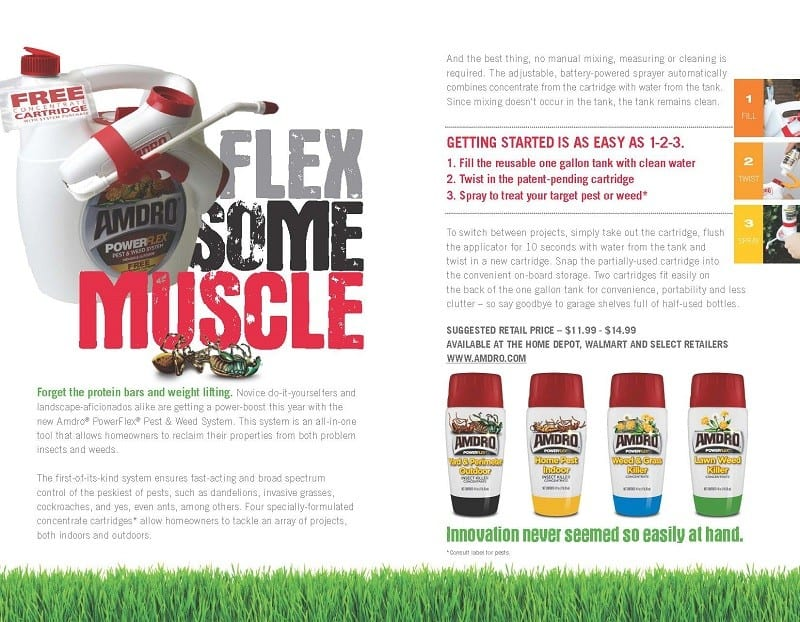 Flex Some Muscle_Infographic