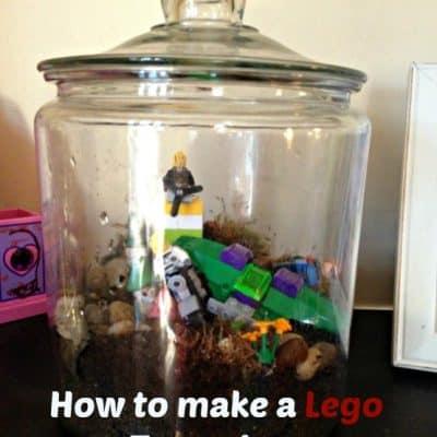 Making a Lego Terrarium