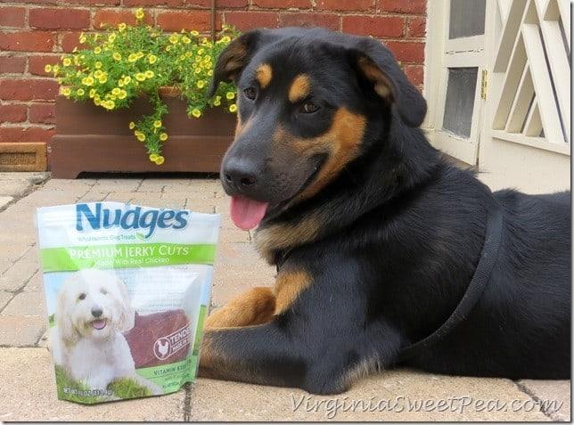 Nudges-Dog-Treats_thumb