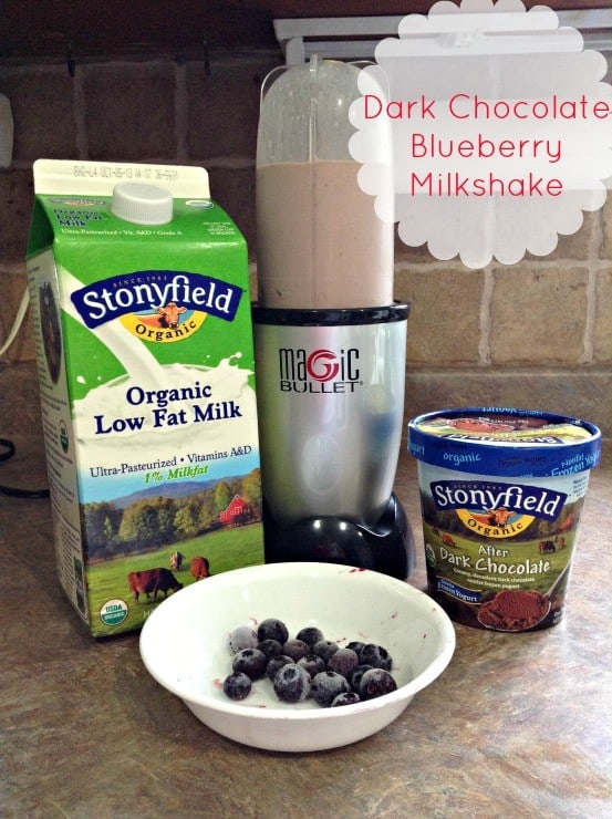 Organic Chocolate Milkshake Recipe