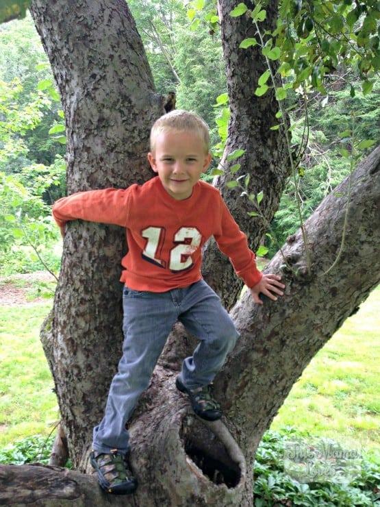 target-instagram-climbing-tree