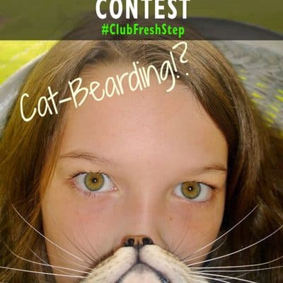 #ClubFreshStep Cat Bearding Photo Contest