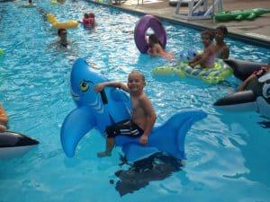 swimming-on-shark-cherished-childhood
