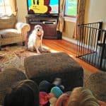 watching-julius-jr-nick-jr-#juliusjr