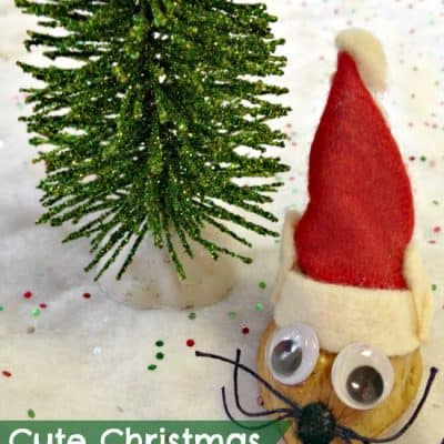 Christmas Mouse Craft: DIY Ornament