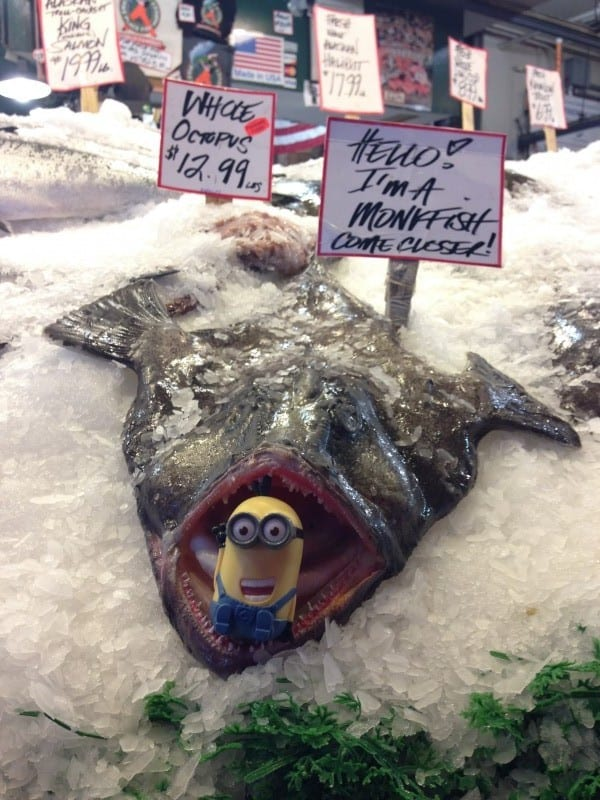 pike-place-market-monkfish