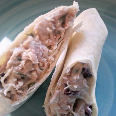 Turkey Cranberry Wrap Recipe