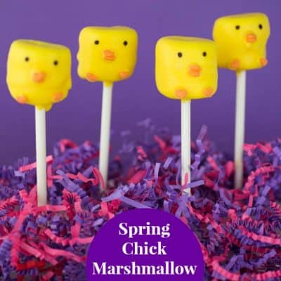 Spring Chick Marshmallow Pops Recipe