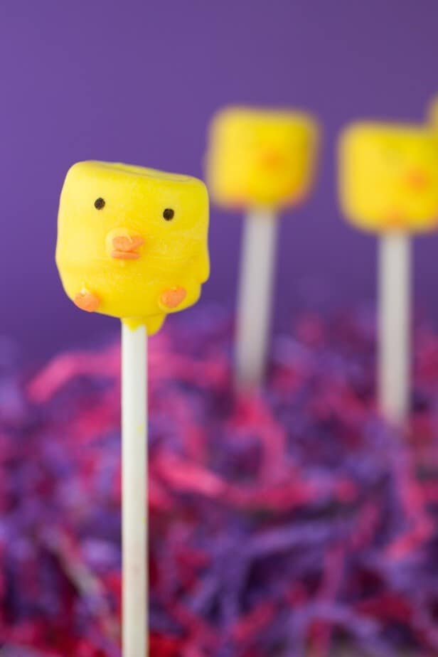 Spring Chick Marshmallow Pops-5