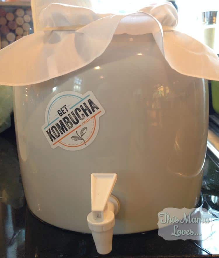 kombucha lead-free brewing vessel
