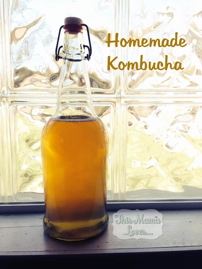 Home Brew Kombucha