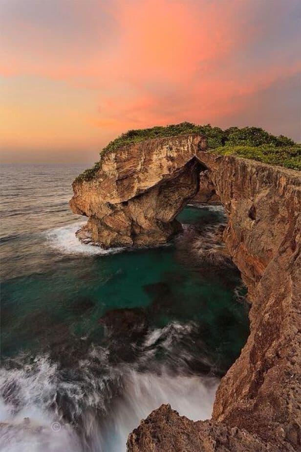 puerto rico nature shot