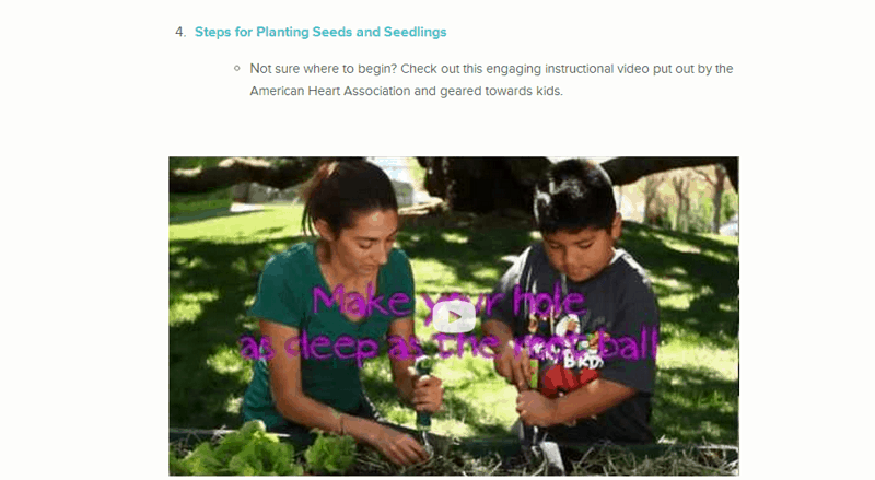 zoobean-planting-seeds-video