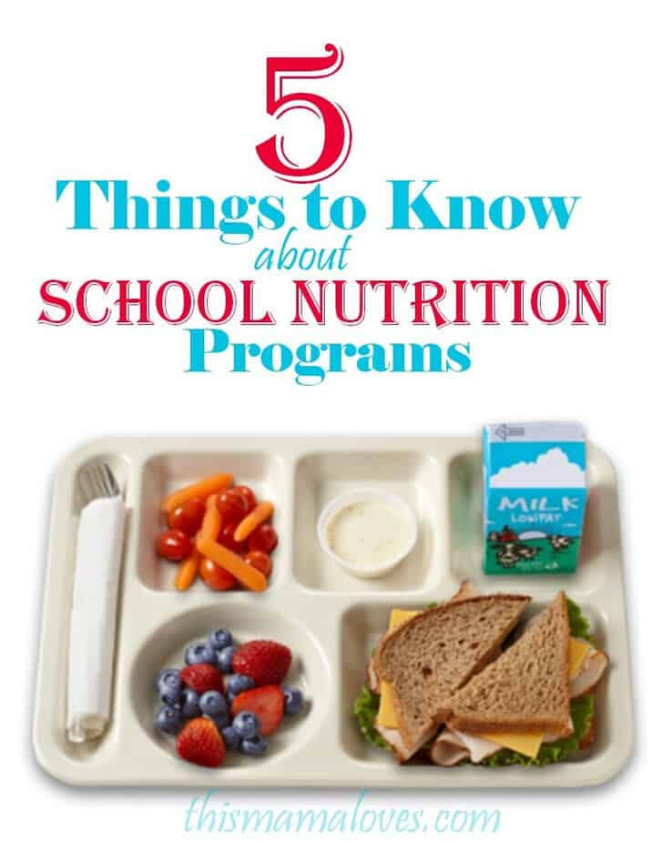 food in schools Two suggestions: if healthy options are not available in your school, get in the habit of packing a healthy lunch for your child and boycott the cafeteria's fast foods then, reach out to local, state and national elected officials and demand better nutrition in your school.