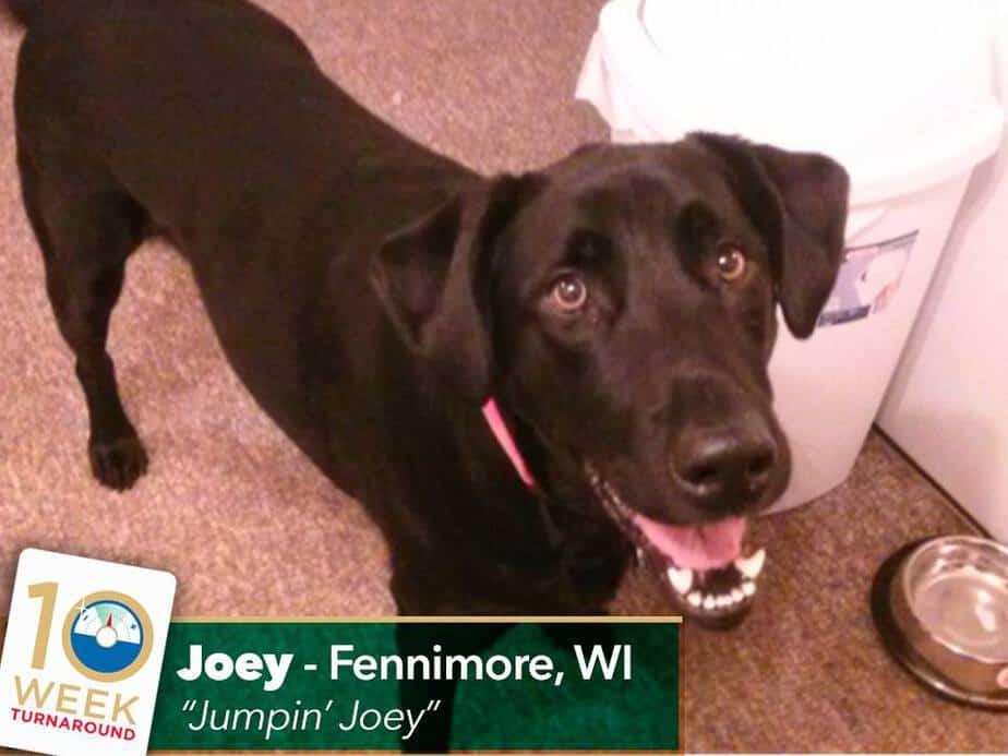 joey-turnaround
