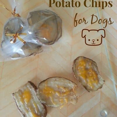 Roasted Cheddar Potato Chips Recipe for Dogs