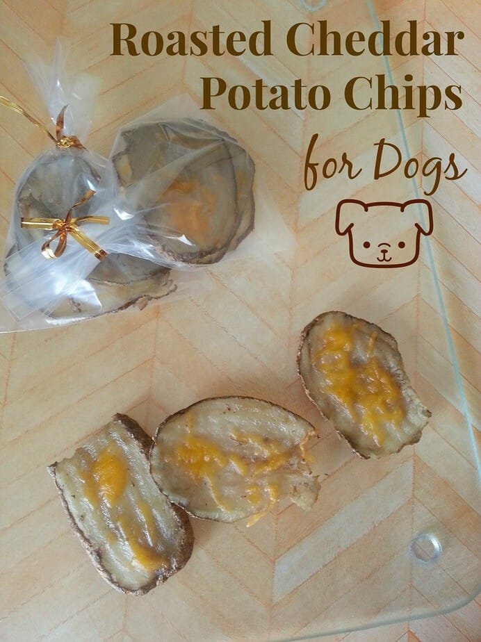 roasted-cheddar-chips-dogs