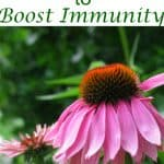 vitamins-boost-immunity-fall