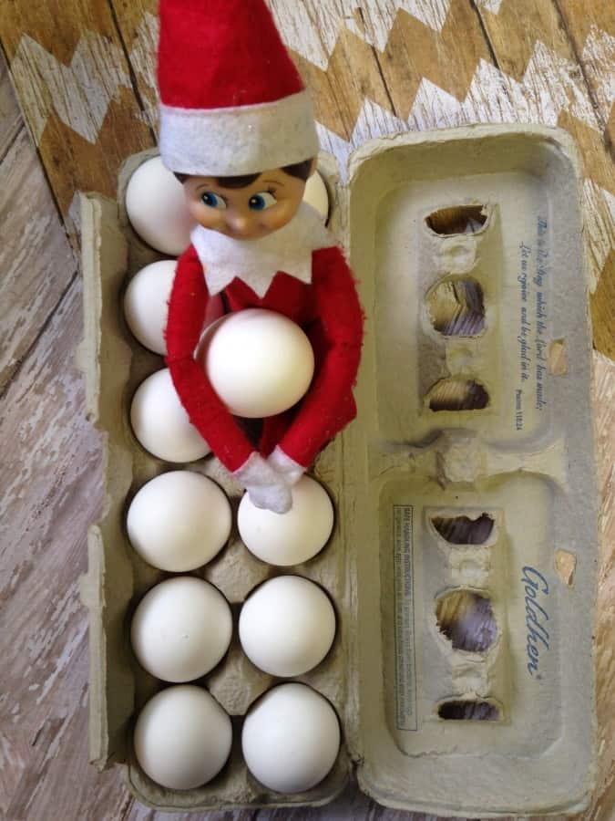 elf eggs