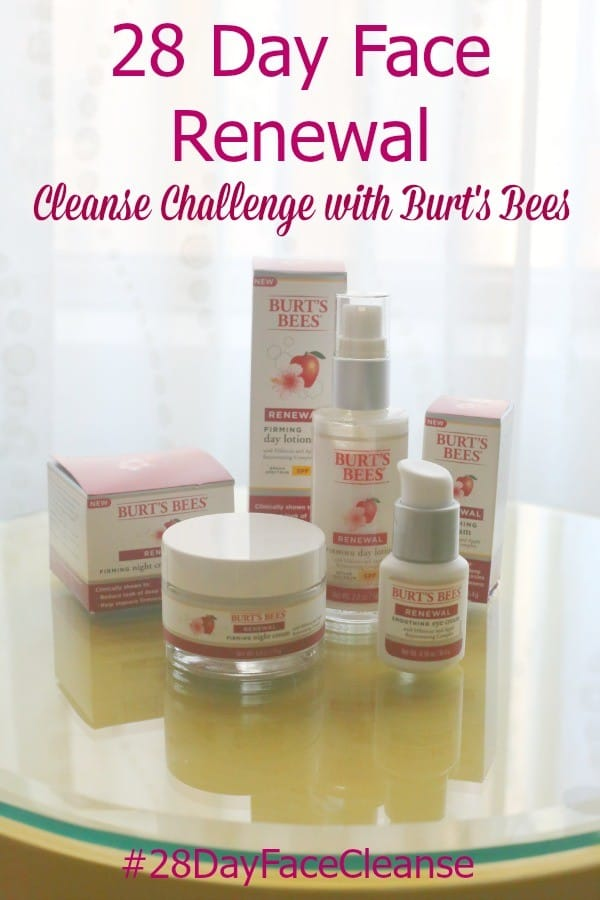 #28dayfacecleanse