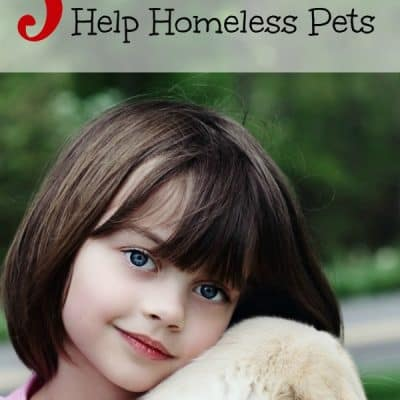 5 Cool Ways Kids Can Help Homeless Pets