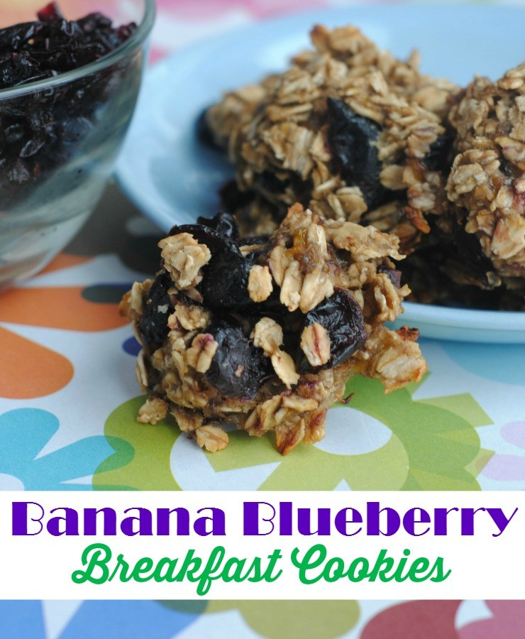 banana-blueberry-breakfast-cookies