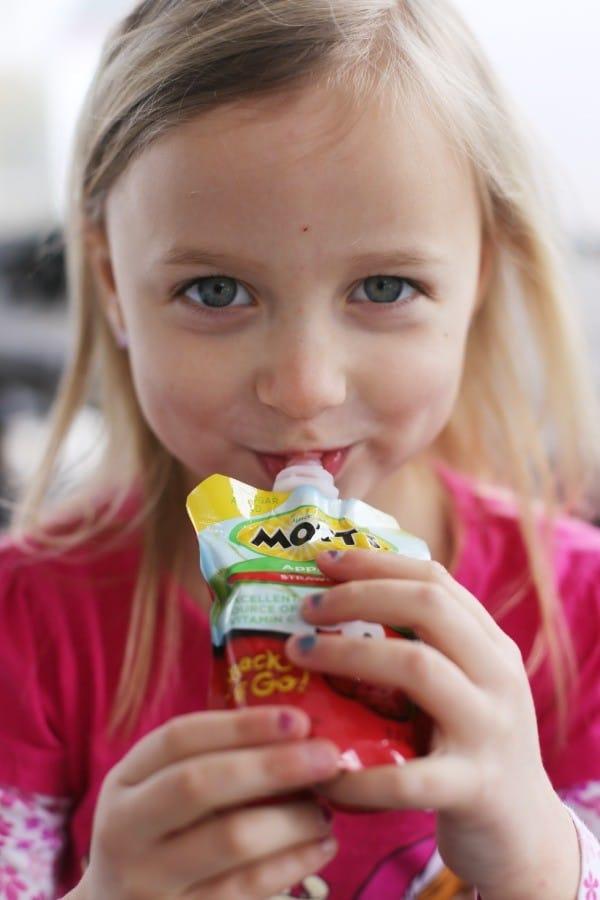 motts-snack-go-strawberry