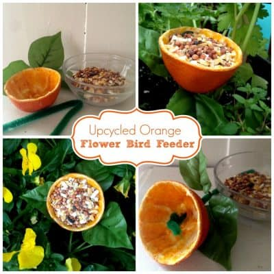 Orange Peel Flower Upcycled Bird Feeder