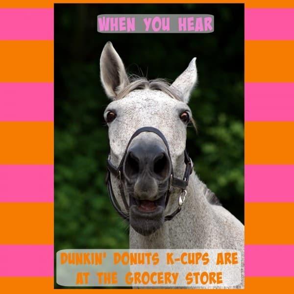 horse meme final