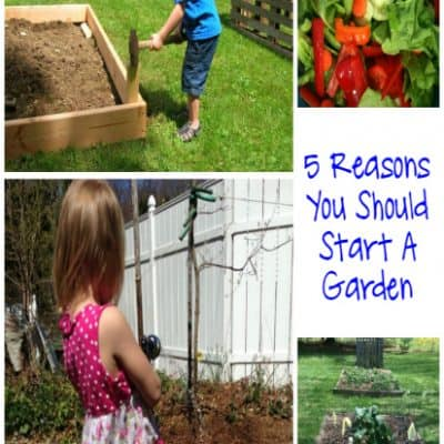 The How and Why For Growing Your Own Garden