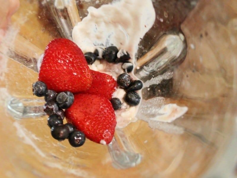 berry-bramble-homemade-frozen-yogurt-mix