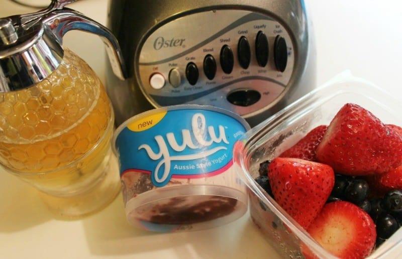 homemade-frozen-yogurt-ingredients