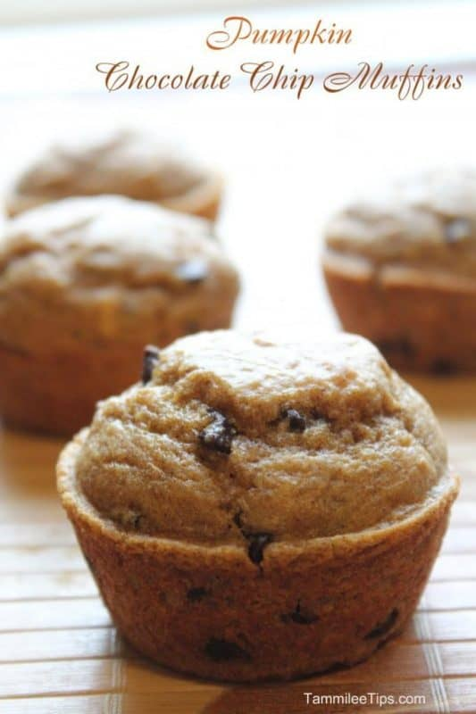 Pumpkin Chocolate Chip Muffins from Tammilee Tips