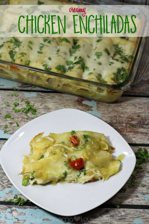creamy-chicken-enchilads