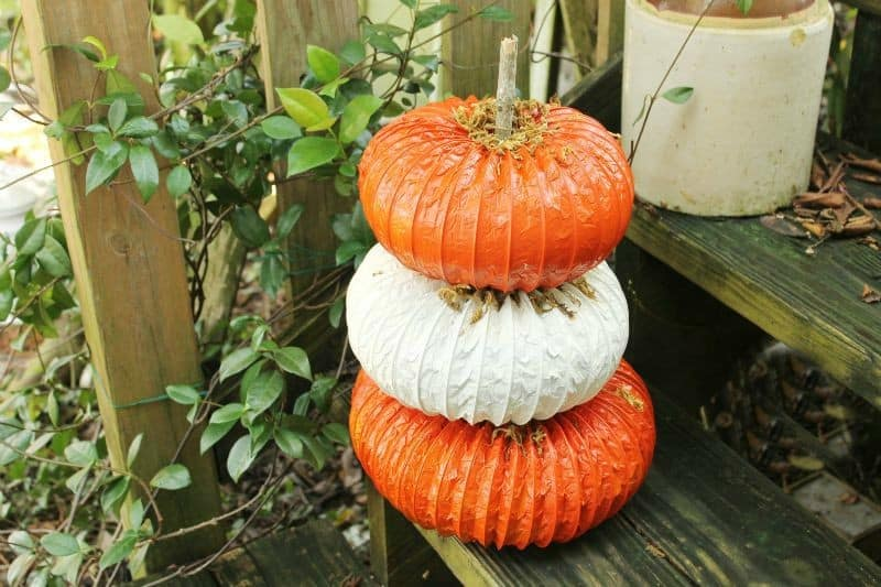 dryer-vent-pumpkins-horiz